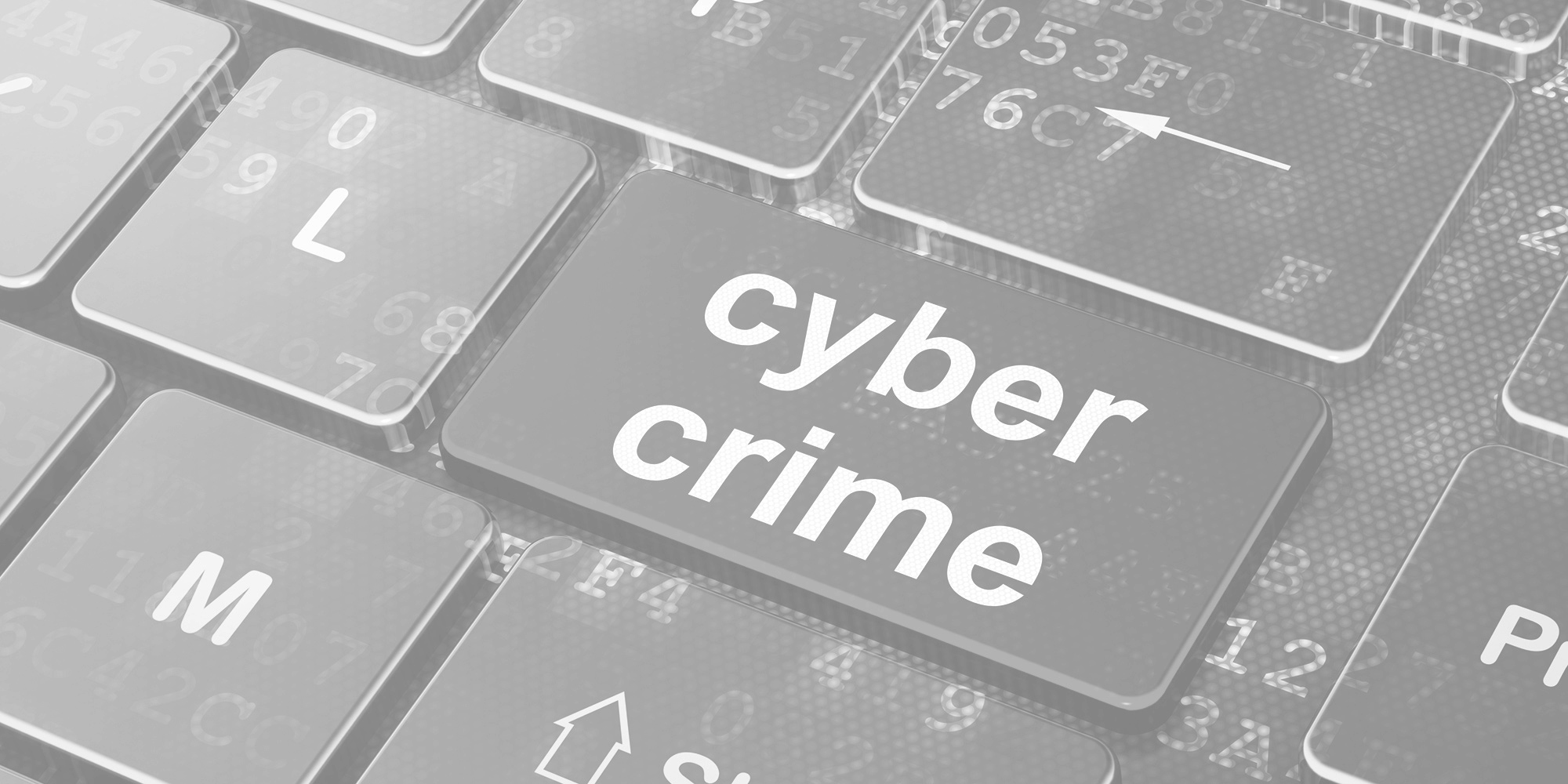 Insurance your business against cyber crime
